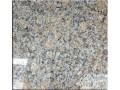 罗马金钻(江西花岗岩)