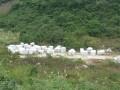 斯法尔灰、梅西灰矿山荒料图