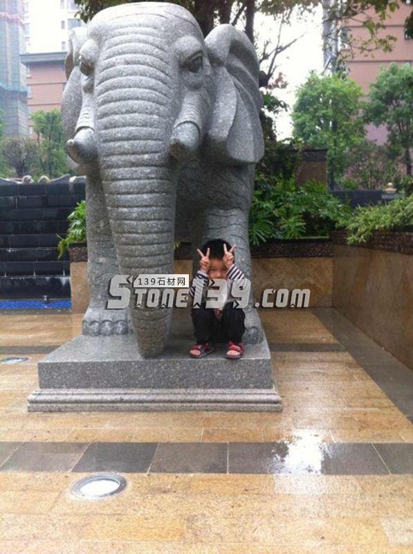 动物雕刻 花岗岩大象-- 恒毅辉杰石材