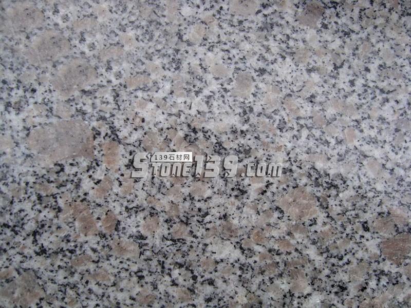 珍珠花-- 厦门广惠万家石材有限公司