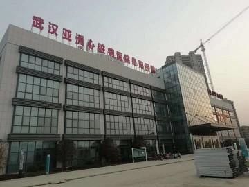 湖北黄金麻 白麻工地-安徽阜阳民生医院 (10)