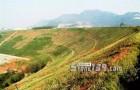 建设绿色矿山,规模不同要求不同!做石材的你都知道吗?