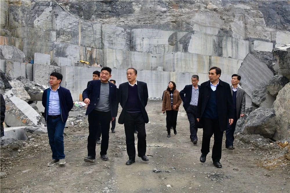 中国煤炭地质总局领导到广西忻城(银白龙大理石产地)考察石材产业