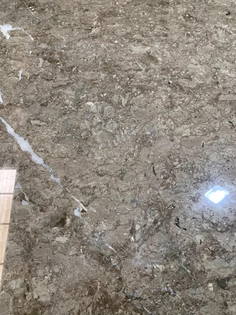 温德姆灰(雅士灰)—2019重点推广产品