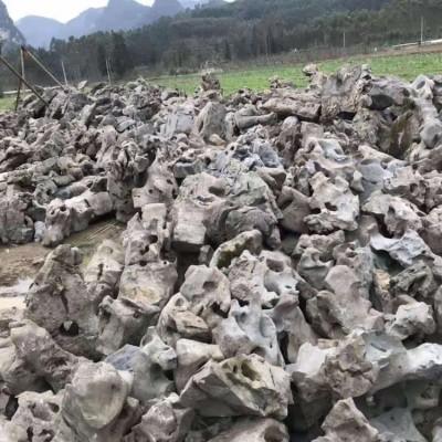 太湖石假山石 庭院造景 水中的石头