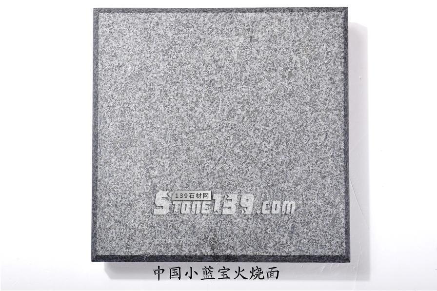 中国小蓝宝(屏南654)替代长泰芝麻黑