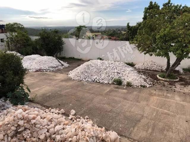 巴西联邦警察开展行动打击非法开采矿产 5人被捕 5人在逃 其中3人为中国人