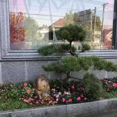 浙江芝麻黑花岗岩外墙窗套装饰 线条磨光