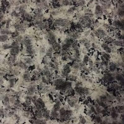 豹皮花-独一无二的花岗岩