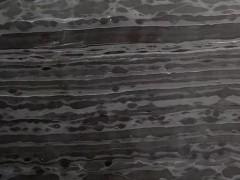 黑木纹(贵州)