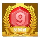 VIP第10年:9级
